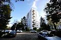 Problem z uciążliwym sąsiadem na osiedlu Mickiewicza w Sopocie