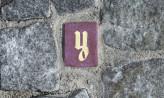 Artystyczne plomby w miejskich chodnikach