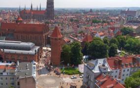 Nowe drzewa nie tylko w centrum Gdańska