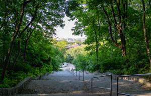 Park Wronia Górka na Aniołkach zyska nowe oblicze. Prace budowlane już w tym roku