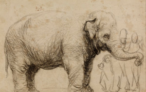 Najsłynniejsza słonica XVII w. na Jarmarku św. Dominika
