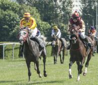Wyścigi konne wracają na hipodrom. 10-11 i 17-18 lipca w Sopocie