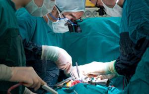Gdańscy naukowcy stworzyli innowacyjny płyn do przechowywania nerek przed przeszczepem