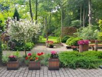Miejskie konkursy na najładniejszy ogródek. Będą nagrody