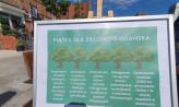 Nowa, zielona polityka Gdańska. Są dwa projekty