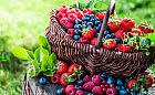 Maliny, borówki, jagody. Dlaczego warto je jeść?