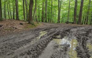 Czytelnik: zniszczono Szlak Borsuka, najpiękniejszy w TPK