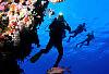 Obalanie mitów o nurkowaniu