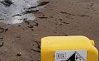 Baniak po chlorze i martwe ptaki na sopockiej plaży
