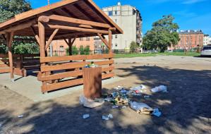 Piękne miejsce, ale pełne śmieci. Jeden kosz to za mało