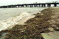 Czy nasze morze musi być brudne?