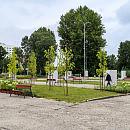 Były parking przy plaży w Gdyni bardziej zielony