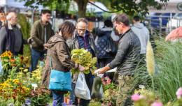 Smaczne, piękne i naturalne - Dary Ziemi w Parku Kolibki w Gdyni