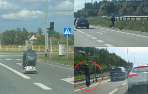 Co oni robią na tych drogach? Znaleźli się tam, gdzie nie powinni