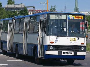 40 lat temu pojawiły się przegubowe ikarusy. W weekend przejazdy autobusami