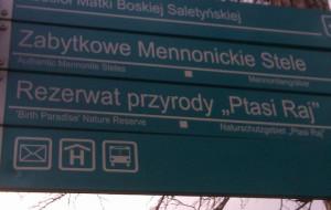 Zaskakujący drogowskaz w Sobieszewie