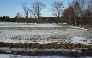 Gdańsk odbuduje ogrody działkowcom