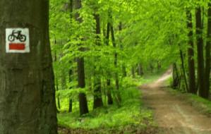 Szlak między Gdańskiem Osową a Źródłem Marii
