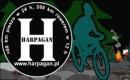 Harpagan 38; przy lekkim mrozie