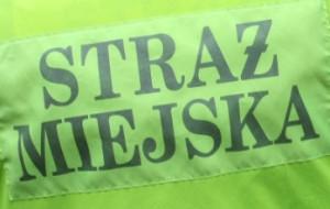 Zarzuty dla strażniczki miejskiej z Sopotu