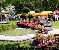 Ogród – weekendowy festyn w Kolibkach