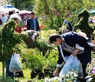 Weekend dla miłośników ogrodów w Parku Kolibki