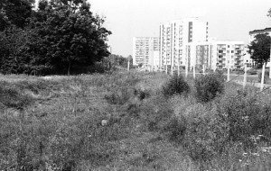 Czy zabytkowy park zamieni się w osiedle mieszkaniowe?