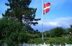 Okazja! Język duński w okazyjnej cenie. Tłumaczenia przysięgłe, specjalistyczne, zwykłe!