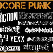 D.I.Y. Hardcore Punk Fest vol.11
