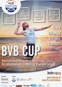 Beach Volleyball Business Cup