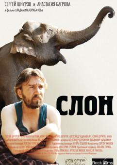 Kino rosyjskie: Słoń + zbiórka charytatywna
