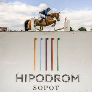 Halowe Zawody Regionalne w Skokach przez przeszkody JumpOFF II