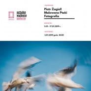 Malowane Ptaki / Wystawa Fotografii / Piotr Żagiell