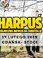 Harpuś - z mapą po bursztyny