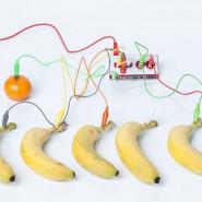 Muzykalno-owocowe warsztaty o elektryczności dla dzieci