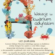 Wakacje na Rafie Koralowej w Akwarium  Gdyńskim.
