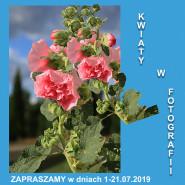 Kwiaty w fotografii - wystawa