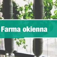 Zrób to sam: Farma okienna