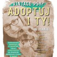 Vintage Psy - adoptuj i Ty! Piknik z seniorami Promyka