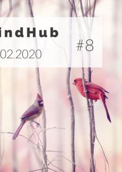 MindHub GFKM - Turkus w praktyce