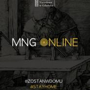 Muzeum Narodowe online