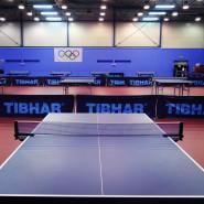 Tenis stołowy dla inteligentnych cz.1
