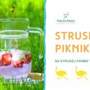 Strusi Piknik - Strusia Farma Kniewo