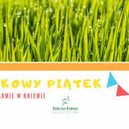 Piknikowy piątek na Strusiej Farmie w Kniewie