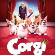 Corgi, psiak królowej - seanse specjalne