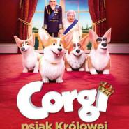 Corgi, psiak królowej  seanse specjalne 18 i 19 lipca