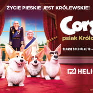 Corgi, psiak królowej  seanse specjalne