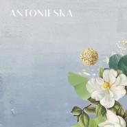 Wernisaż sztuki Natalii Antonieskiej