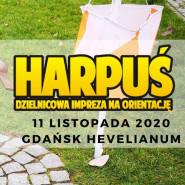 Harpuś - z mapą do Hevelianum!