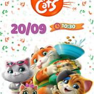 Filmowe poranki: 44 koty, cz. 2
